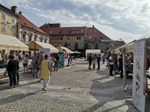Stojnice različnih invalidskih društev na Glavnem trgu